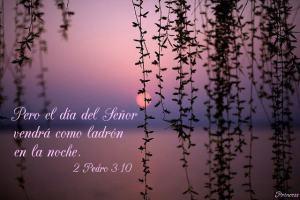El día del Señor vendrá como ladrón en la noche