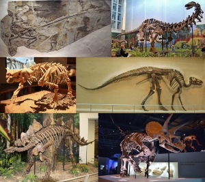 49605-dinosauria_montage_2